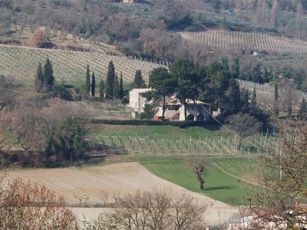 Rustico/Casale in vendita a Bevagna, Torre Del Colle, Con giardino, 680 mq