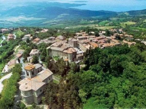 Immobile in vendita a Passignano sul Trasimeno, Castel Rigone, 20000 mq