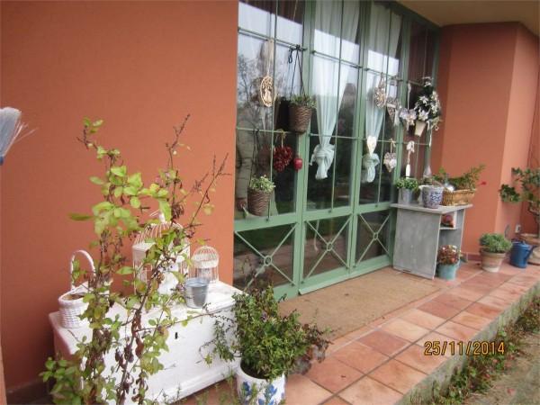 Villa in vendita a Perugia, San Costanzo, Con giardino, 300 mq - Foto 13