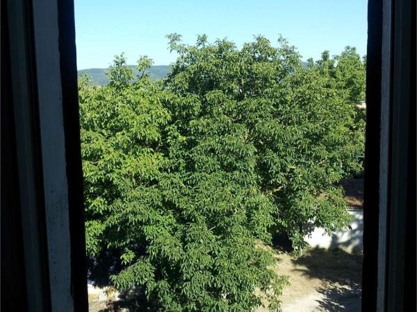 Casa indipendente in vendita a Deruta, Santangelo Di Celle, Con giardino, 130 mq - Foto 5