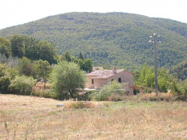 Rustico/Casale in vendita a Todi, Con giardino, 290 mq - Foto 4
