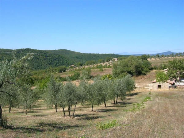 Rustico/Casale in vendita a Todi, Con giardino, 290 mq - Foto 3