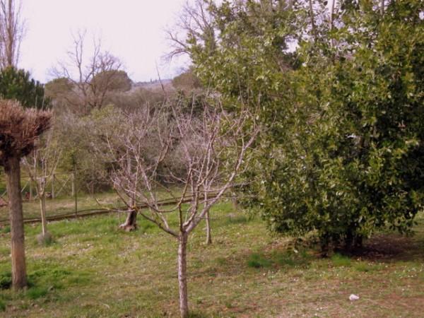 Villa in vendita a Magione, San Feliciano, 90 mq - Foto 15