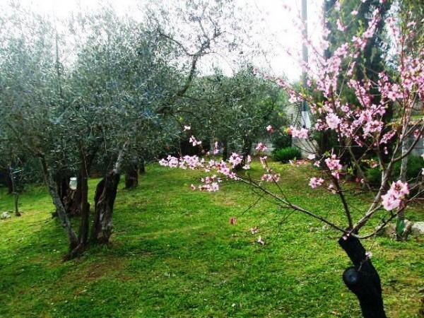 Appartamento in vendita a Corciano, Mantignana, Con giardino, 90 mq - Foto 23