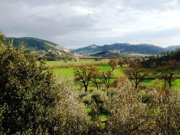 Appartamento in vendita a Corciano, Mantignana, Con giardino, 90 mq - Foto 13