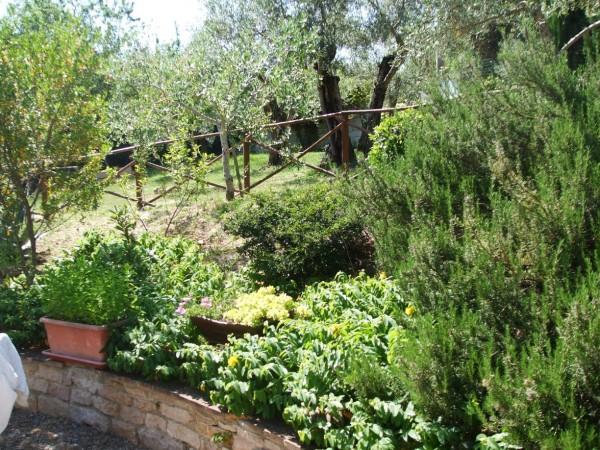 Appartamento in vendita a Corciano, Mantignana, Con giardino, 90 mq - Foto 10