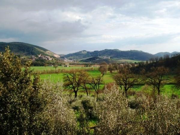 Appartamento in vendita a Corciano, Mantignana, Con giardino, 90 mq - Foto 12