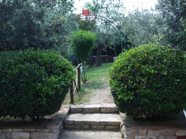 Appartamento in vendita a Corciano, Mantignana, Con giardino, 90 mq - Foto 9