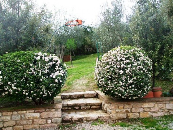 Appartamento in vendita a Corciano, Mantignana, Con giardino, 90 mq - Foto 25