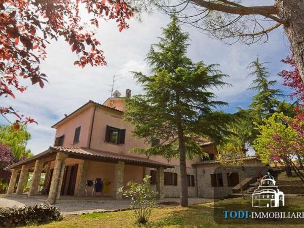 Villa in vendita a Todi, Todi - Frazione, Con giardino, 450 mq - Foto 12