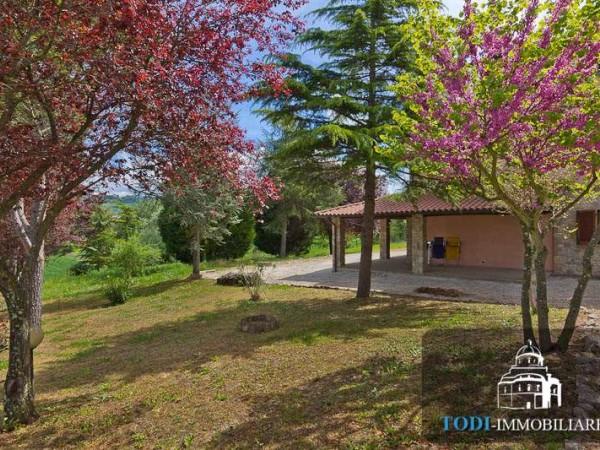 Villa In Vendita A Todi Todi Frazione Con Giardino