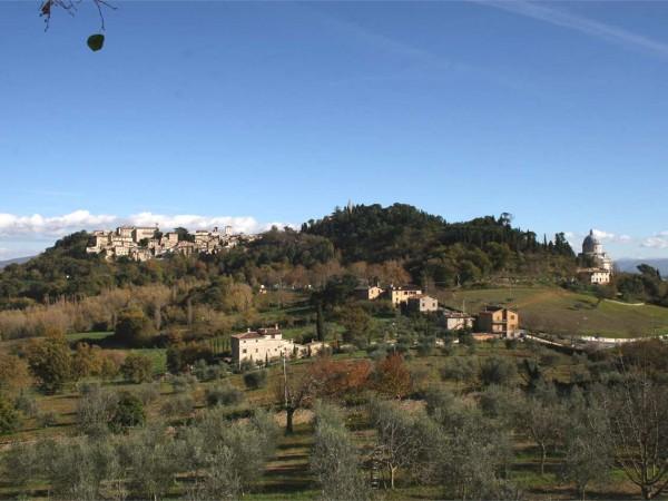 Appartamento in vendita a Todi, Con giardino, 60 mq - Foto 14