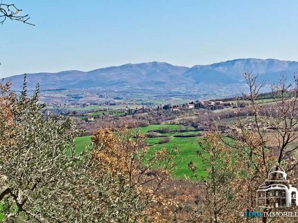 Rustico/Casale in vendita a Todi, Con giardino, 200 mq - Foto 6