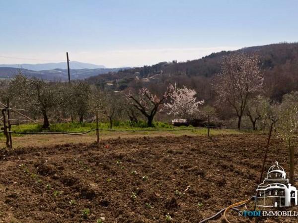 Rustico/Casale in vendita a Todi, Con giardino, 200 mq - Foto 3