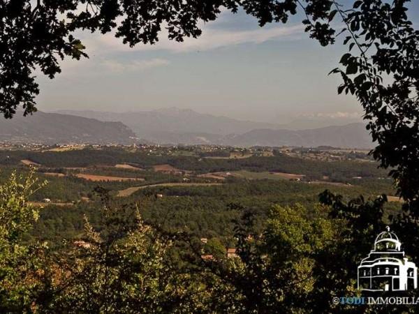 Villa in vendita a Montecchio, Con giardino, 235 mq - Foto 13