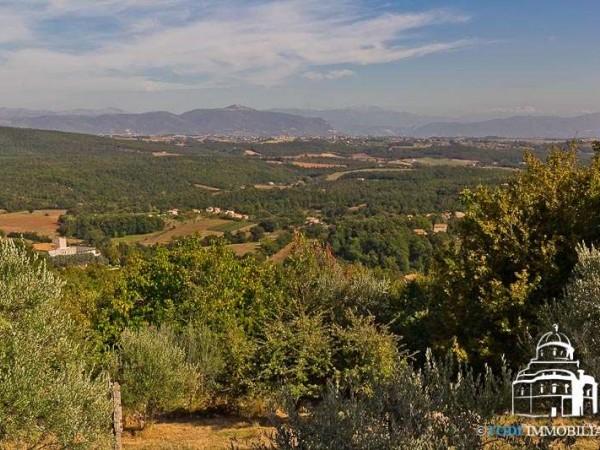 Villa in vendita a Montecchio, Con giardino, 235 mq - Foto 11