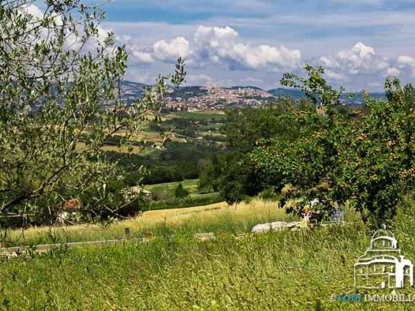 Rustico/Casale in vendita a Todi, Con giardino, 150 mq - Foto 6