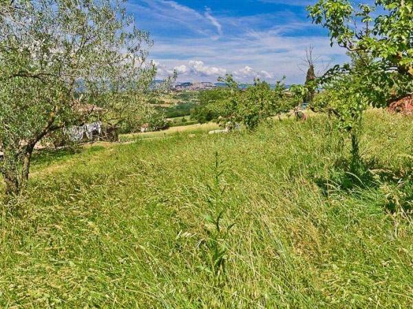 Rustico/Casale in vendita a Todi, Con giardino, 150 mq - Foto 4