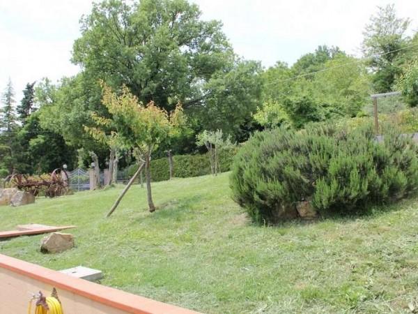 Rustico/Casale in vendita a Todi, Todi - Frazione, Con giardino, 120 mq - Foto 4