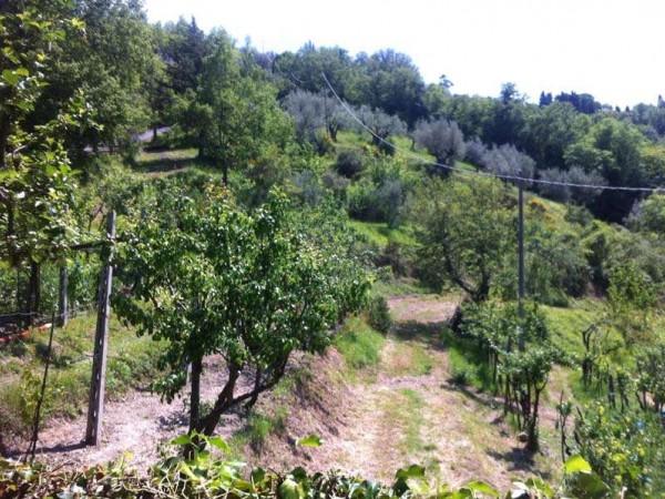 Villa in vendita a Perugia, Centro Storico Di Pregio, Con giardino, 230 mq - Foto 2