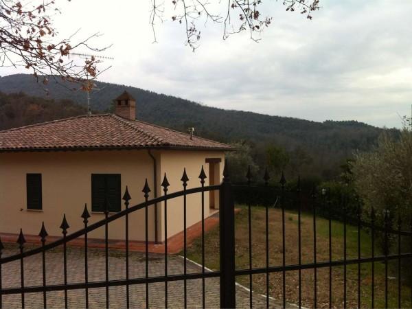 Villa in vendita a Collazzone, Arredato, con giardino, 200 mq