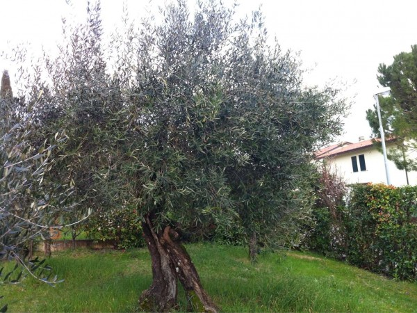 Villa in vendita a Perugia, Ramazzano, Con giardino, 200 mq - Foto 9