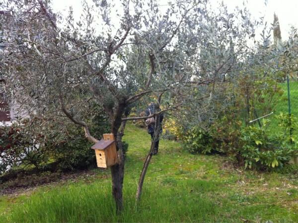 Villa in vendita a Perugia, Ramazzano, Con giardino, 200 mq - Foto 5