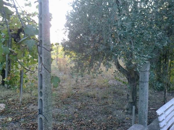 Casa indipendente in vendita a Assisi, Capodacqua, Con giardino, 180 mq