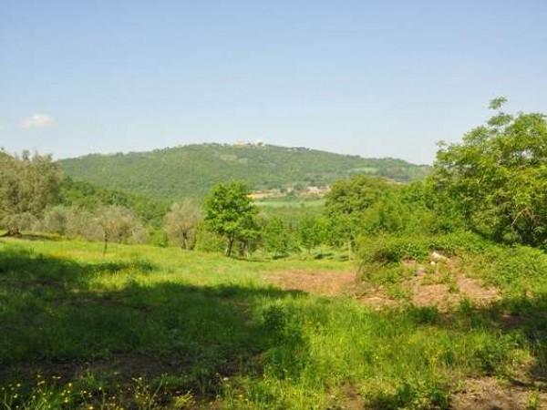Appartamento in vendita a Marsciano, Con giardino, 360 mq - Foto 2