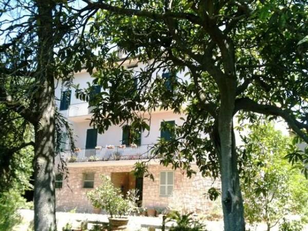 Appartamento in vendita a Perugia, Centro Storico, Con giardino, 175 mq