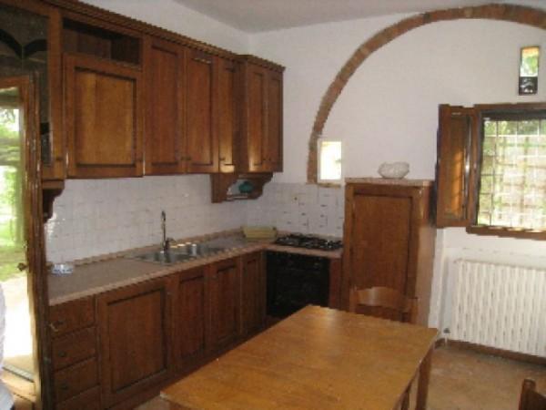 Appartamento in affitto a Perugia, S. Martino In Colle, S. Enea, S. Martino In Campo, Arredato, con giardino, 35 mq - Foto 5