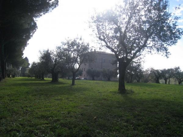 Rustico/Casale in affitto a Perugia, Via Tuderte, Arredato, con giardino, 25 mq - Foto 2