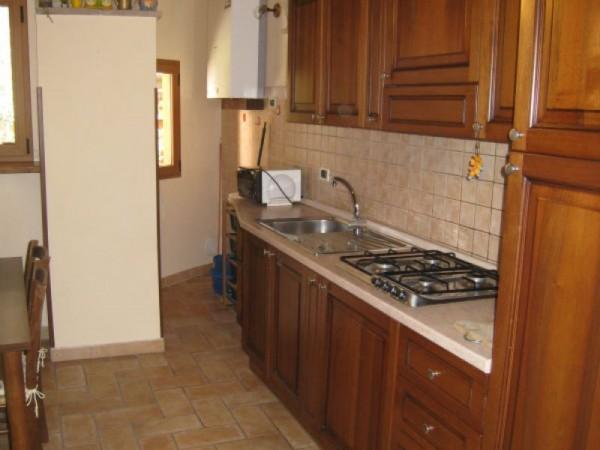 Appartamento in affitto a Perugia, Porta Pesa, Arredato, 65 mq - Foto 7
