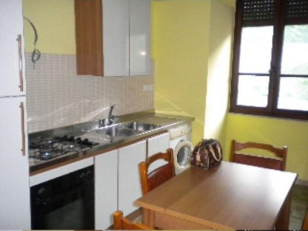 Appartamento in affitto a Perugia, Porta Eburnea, Porta S.pietro, Arredato, 140 mq - Foto 1