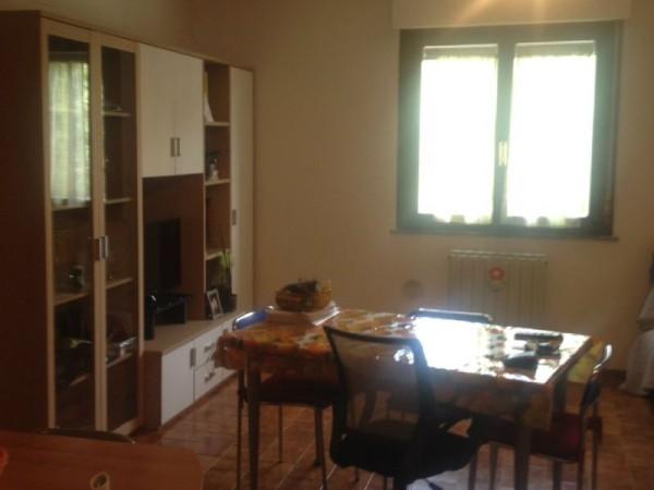 Appartamento in affitto a Perugia, Gallenga, Arredato, 70 mq - Foto 10