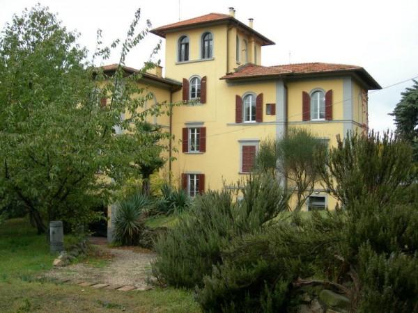 Appartamento in affitto a Perugia, Veterinaria, Arredato, con giardino, 50 mq - Foto 4