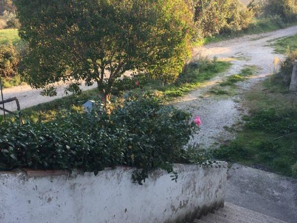 Rustico/Casale in affitto a Perugia, Resina, Con giardino, 130 mq - Foto 4