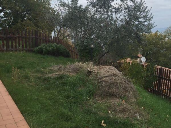 Villa in vendita a bettona con giardino 90 mq bc 17504 for Giardino 90 mq