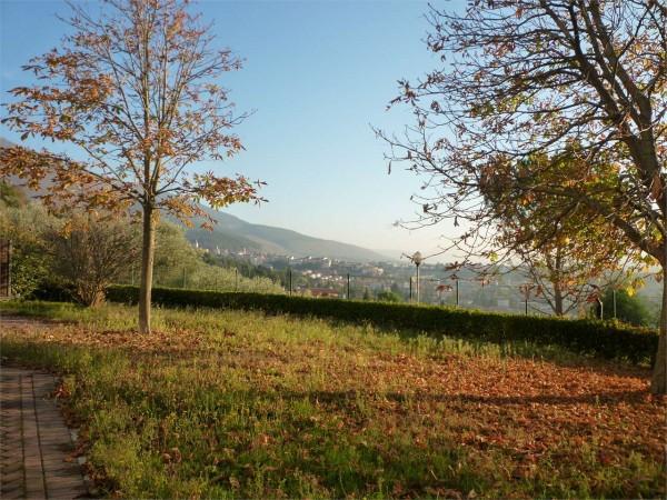 Villa in vendita a Gualdo Tadino, Con giardino, 265 mq - Foto 33