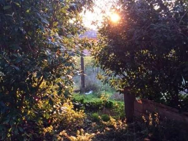 Villa in vendita a Perugia, Con giardino, 310 mq - Foto 10