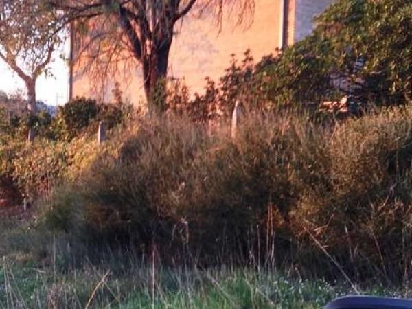 Villa in vendita a Perugia, Con giardino, 310 mq - Foto 3