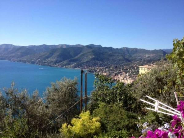 Appartamento in vendita a Camogli, San Rocco Di Camogli, Con giardino, 60 mq - Foto 9