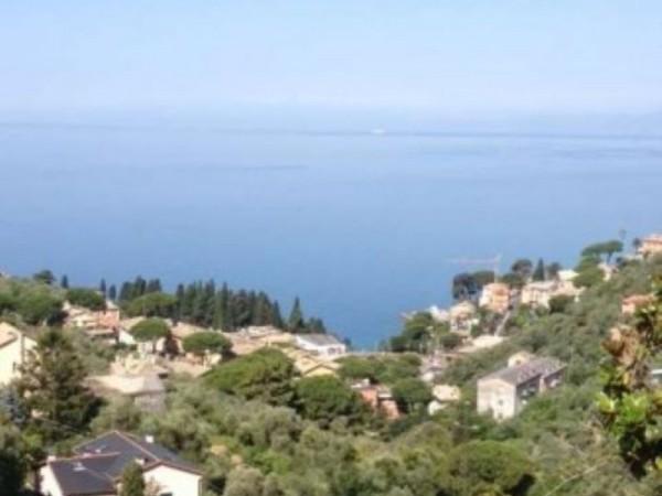 Appartamento in vendita a Camogli, Con giardino, 70 mq - Foto 1