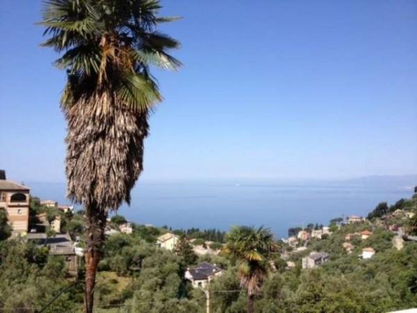 Appartamento in vendita a Camogli, Con giardino, 70 mq - Foto 8