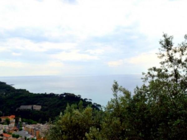Casa indipendente in affitto a Camogli, Ruta, Arredato, con giardino, 60 mq - Foto 23