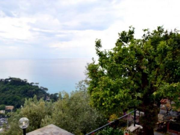 Casa indipendente in affitto a Camogli, Ruta, Arredato, con giardino, 60 mq - Foto 22