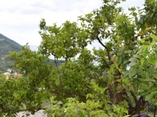 Appartamento in affitto a Camogli, Ruta, Arredato, con giardino, 70 mq - Foto 12