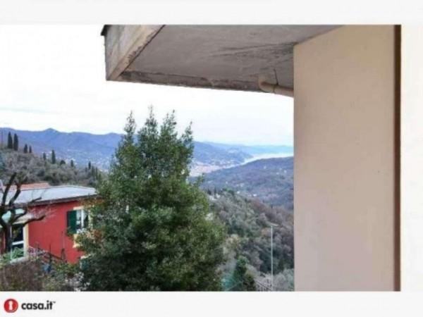 Appartamento in vendita a Rapallo, San Martino Di Noceto, 50 mq