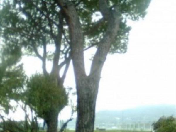 Appartamento in vendita a Rapallo, Parco Casale, Con giardino, 70 mq - Foto 7
