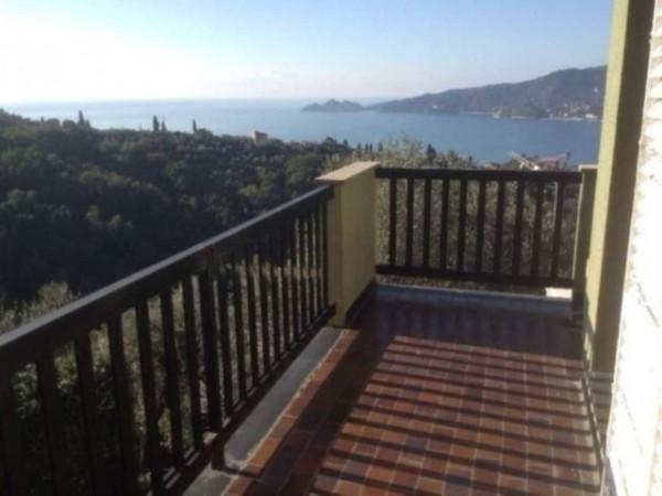 Villa in vendita a Zoagli, Con giardino, 350 mq - Foto 9